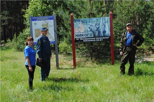 Плановый  выезд оперативной группы в Трехбалтаевское участковое лесничество БУ «Шемуршинское лесничество» Минприроды Чувашии