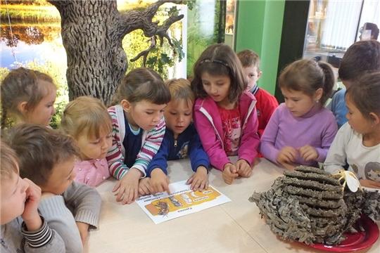 В национальном парке «Чаваш вармане» прошел познавательный час «Кто такие пчёлы?»