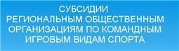 Субсидии региональным спортивным федерациям по командным игровым видам спорта