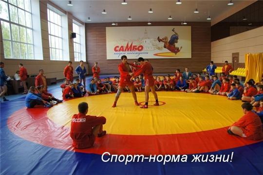 «Спорт -  норма жизни»: новое оборудование и инвентарь начали поступать в спортивные школы Чувашии