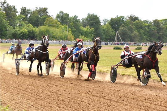 «Рысистые бега»: в Новочебоксарске пройдут соревнования по конному спорту