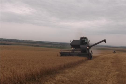 Кипит работа на полях в КФХ «Ямуков Г.Н»