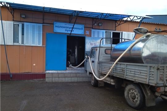 В Моргаушском районе провели обследование молокосборных пунктов