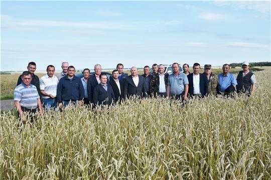 Аграрии Вурнарского района провели семинар-совещание по проведению уборочных работ