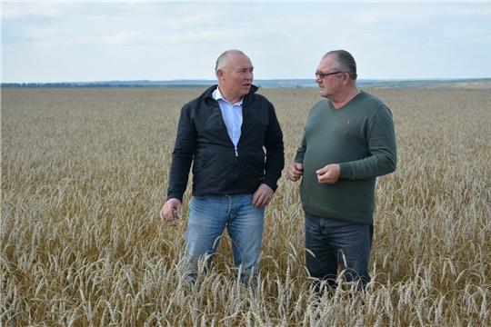 Глава администрации района ознакомился с ходом уборки зерновых