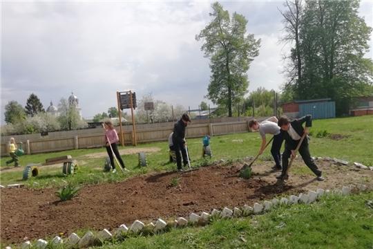 Пришкольный участок при МБОУ «Балдаевская СОШ»: все работали с удовольствием