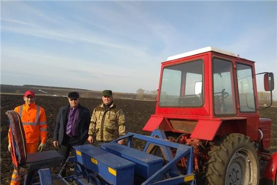 В КФХ Гладкова Н.Г. Яльчикского района приступили к посеву столовой моркови