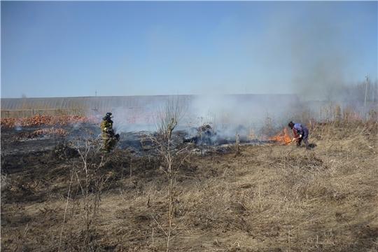 Сжигание сухой травы грозит пожарами!