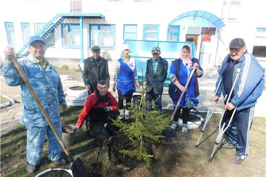 Акция «Посади дерево – соверши добрый поступок в честь Дня Победы»