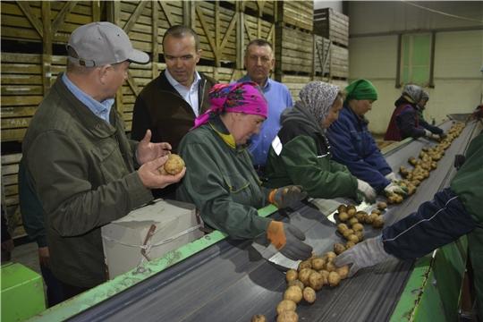 Глава Чувашской Республики Михаил Игнатьев ознакомился с ходом весенних полевых работ в Яльчикском районе