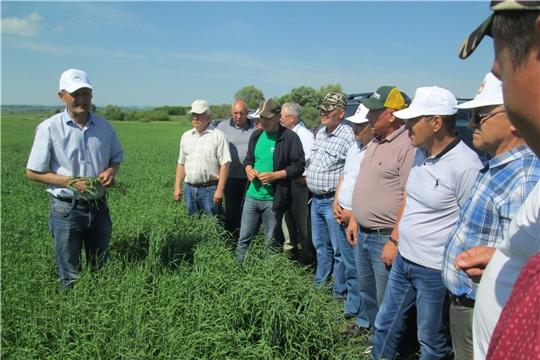 Усовершенствование технологий возделывания сельскохозяйственных культур - залог получения продукции в любых погодных условиях