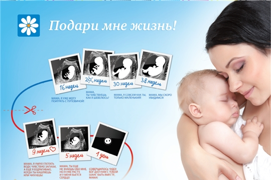 Акция «Подари мне жизнь!» пройдет в Яльчикском районе