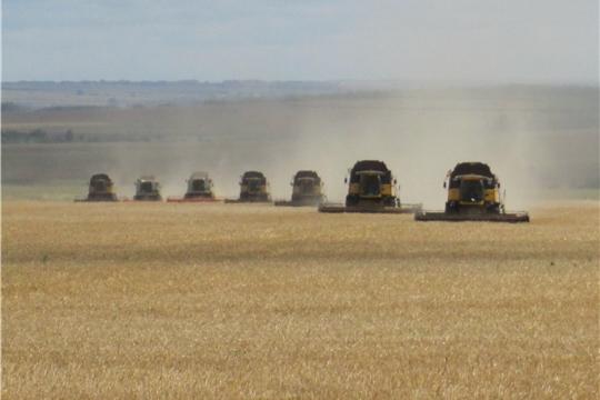 Хозяйства Яльчикского района увеличивают темпы уборки зерновых культур