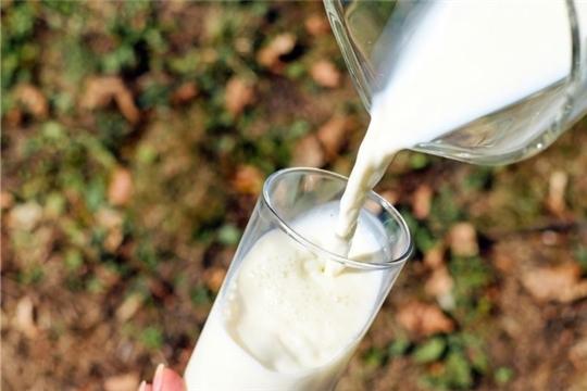 Эксперты не ожидают резких скачков цен на молоко в 2019 году