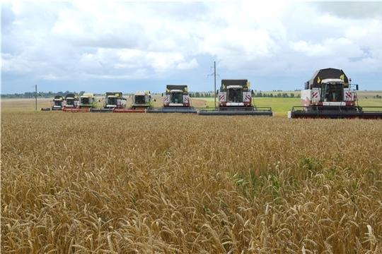 Хлеборобы республики за 2 дня удвоили намолот зерновых