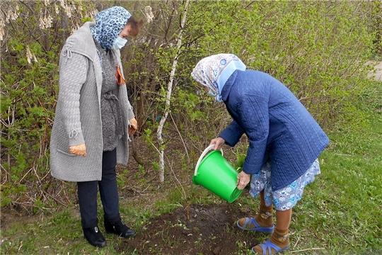 В сельских поселениях Алатырского района продолжается акция «Сад Памяти»