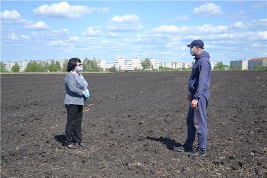 В Алатырском районе активными темпами ведутся полевые работы