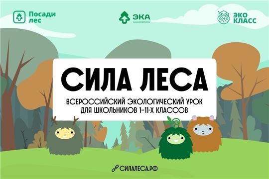 Приглашаем провести Всероссийский экологический урок «Сила леса»