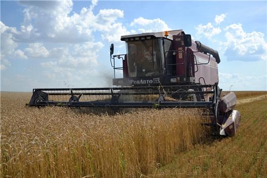 Поздравление главы администрации Алатырского района Н.И. Шпилевой с успешным завершением уборки зерновых и зернобобовых культур