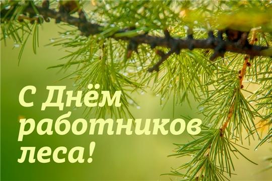 Поздравление главы администрации Алатырского района Н.И. Шпилевой с Днем работников леса