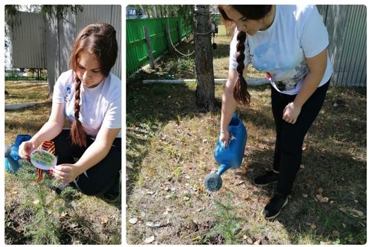 Работники культуры Алатырского района присоединились к Всероссийской акции «Лес Победы»