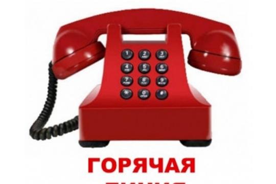 Звоните на «горячую линию»  ко Дню пожилых людей