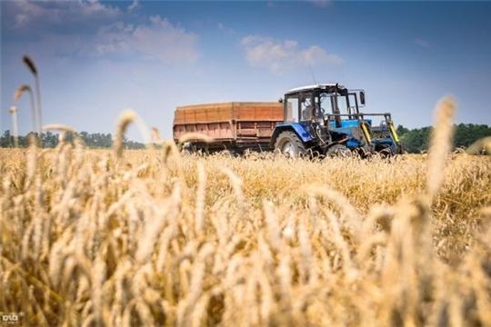 С 2021 года в России появится новый грант для сельхозпроизводителей — «Агропрогресс»