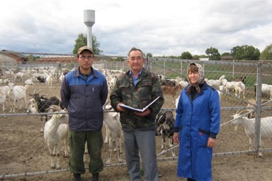 Козоводческая ферма в д.Б.Нурусово