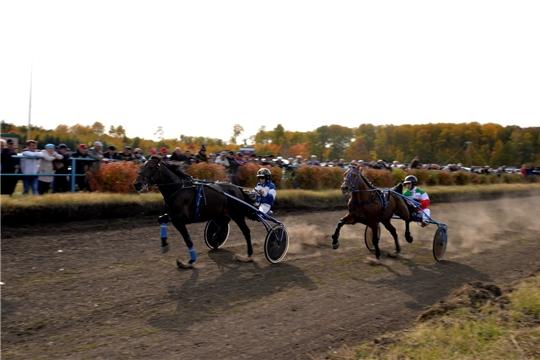 Бега рысистых лошадей на призы ветерана конного спорта Н.П. Кошкина