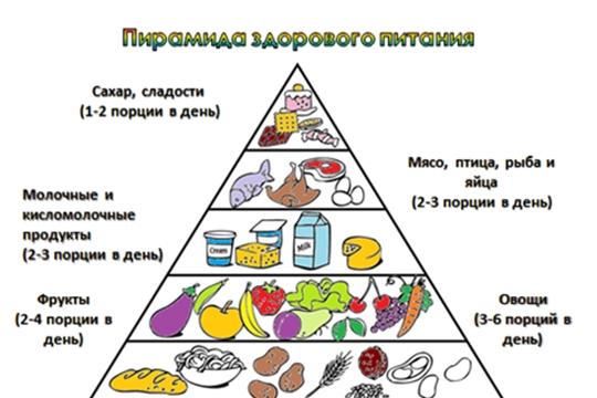 Питание как компонент здорового образа жизни