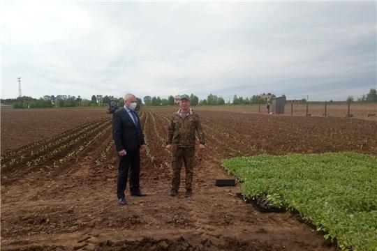 Аграрии Чебоксарского района на этой неделе планируют завершить  яровой сев зерновых культур