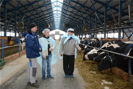 В Чебоксарском районе сельскохозяйственные предприятия и крестьянские (фермерские) хозяйства готовятся к зиме