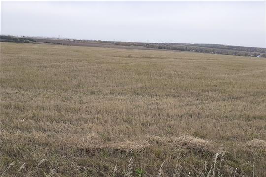 Проведен выездной осмотр целевого использования земель сельскохозяйственного назначения в Чебоксарском районе