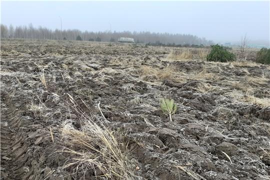 Проведена выездная плановая проверка целевого использования земель сельскохозяйственного назначения в Чебоксарском районе
