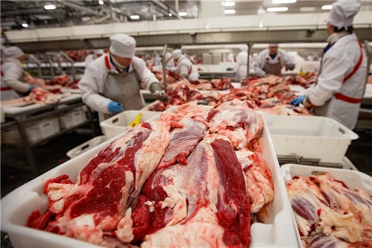 Качество мясной продукции чувашских предприятий соответствует ГОСТу - подтверждает НСС.