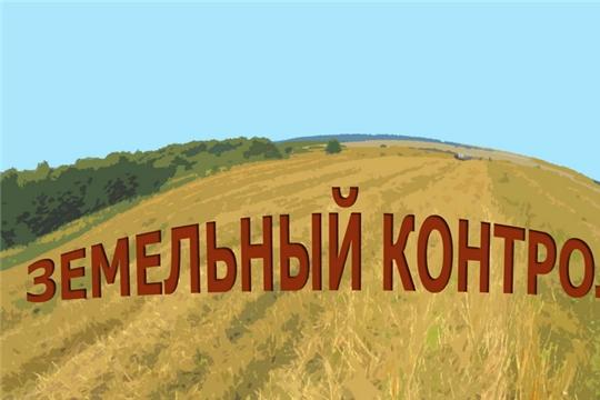 Итоги государственного земельного надзора за 2019 год