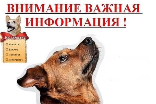 Вниманию владельцев домашних животных!