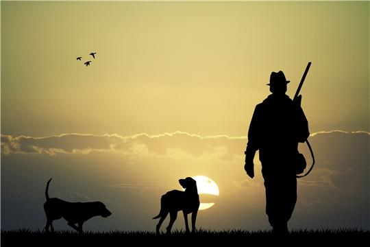 В Чувашии приостановлены все мероприятия, связанные с весенней охотой 2020 года