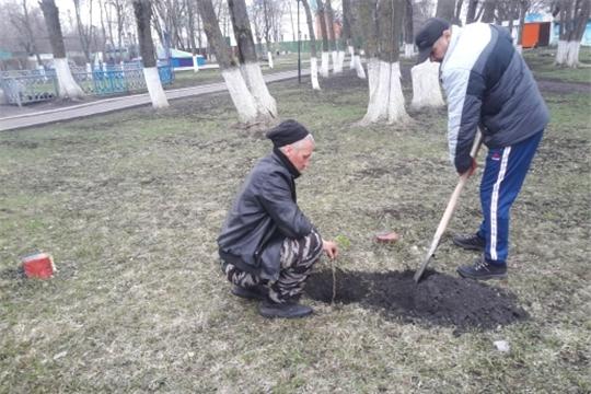 г. Алатырь: работники детского парка «Сказка» поддержали акцию «Сад памяти»