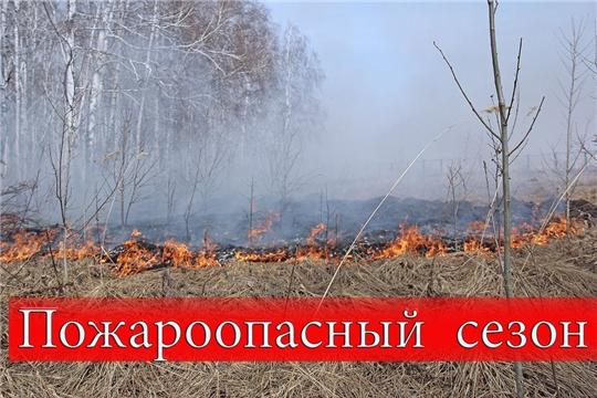 МО МВД России «Алатырский» напоминает о необходимости соблюдать меры пожарной безопасности при посещении лесов