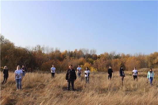 Волонтёры Победы из Алатыря приняли участие в акции «Лес Победы»