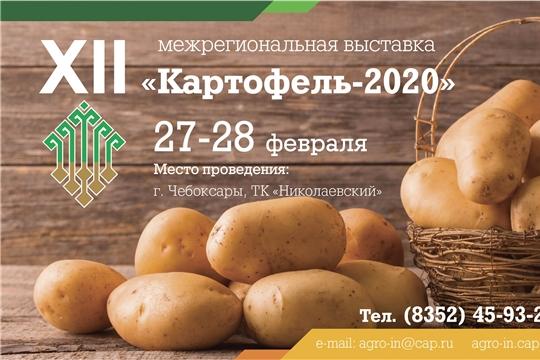27-28 февраля в Чебоксарах пройдет XII Межрегиональная отраслевая выставка «Картофель – 2020»