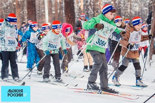 Лыжня России - 2020: готовность номер один