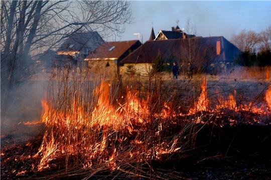 Пал травы опасен! Не разжигайте костры на пикнике!