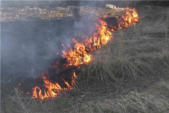 13 пожаров за прошлые сутки