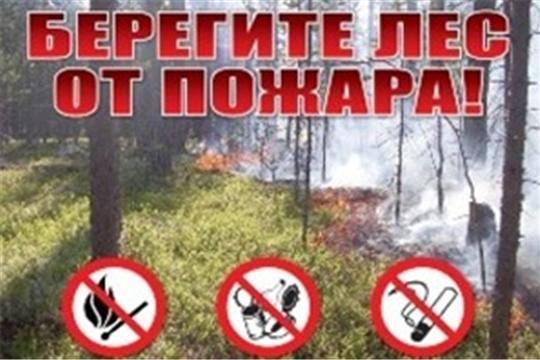 Внимание! Будьте осторожны с огнем в лесу