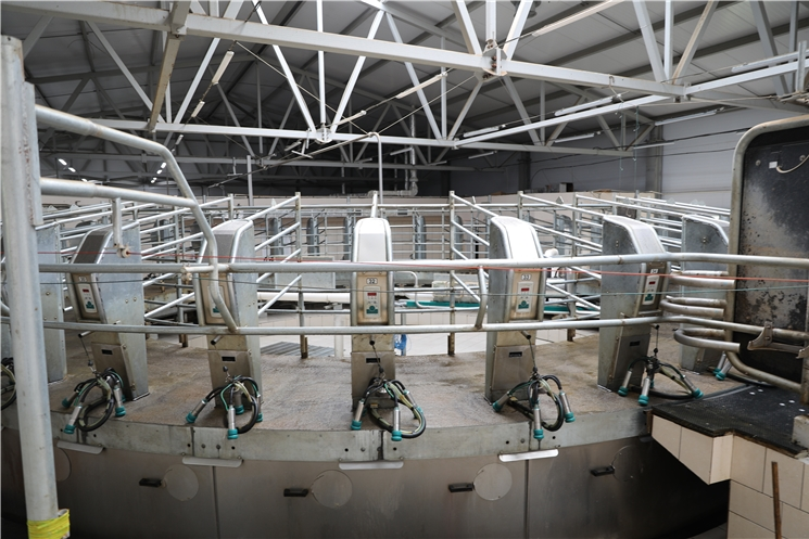 По инициативе Олега Николаева республика дополнительно поддержит молочные фермы