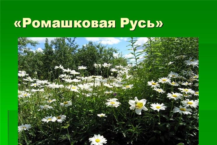 III городской творческий фестиваль «Ромашковая Русь», посвященный Дню семьи, любви и верности