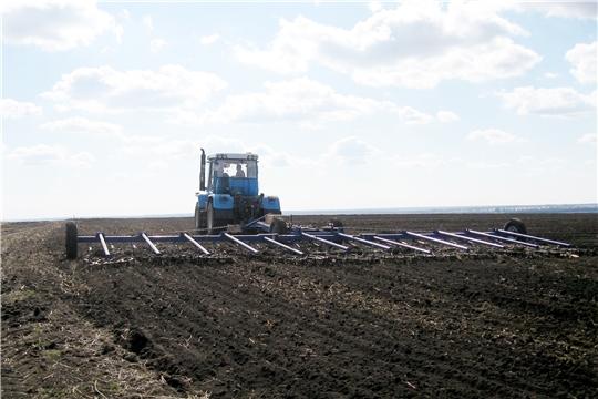 8 сельскохозяйственных предприятий и фермерских хозяйств Ибресинского района приступили к весенним полевым работам