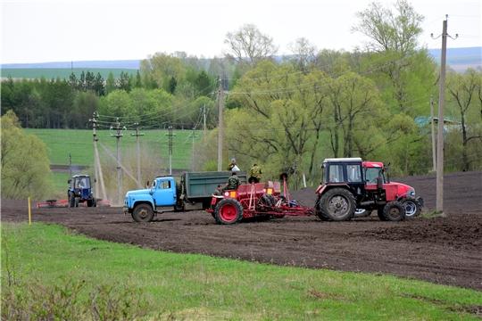 План сева яровых зерновых и зернобобовых культур на 13 мая выполнен на 60 %